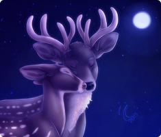 Night in That Land by Fainalotea
