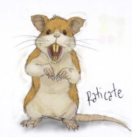 020 Raticate by RtRadke