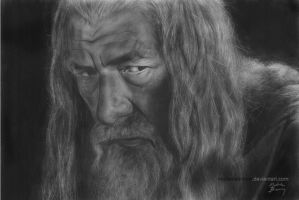 Gandalf by michellebrown