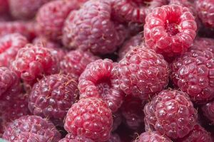 Late Raspberries by muffet1
