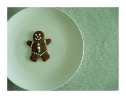 gingerbread man on a plate by reynese