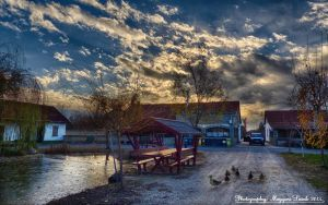 The Horse ranch.   Hungary.  HDR by magyarilaszlo