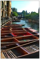Punts on the river Cam by tmz99