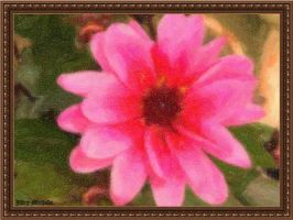 Bloom in pastel by Schiller1971