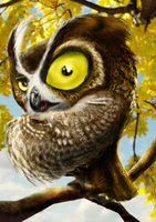 crazy owl by wex4u