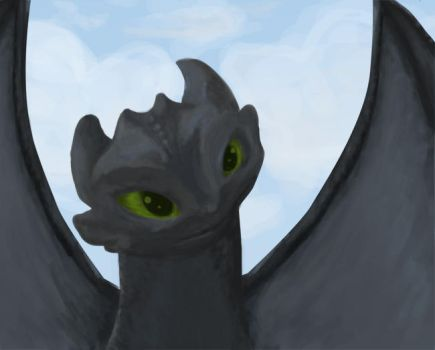 Toothless by kamiko-chan