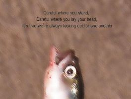 Careful by creativemikey