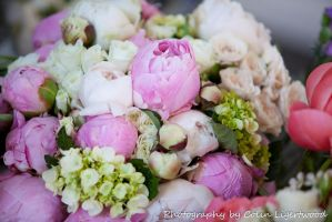 Wedding Bouquets -2 by Colin-LOCP