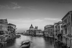 Ponte dell Accademia by FeliDae84