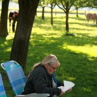 learning text for choir in nature by ingeline-art