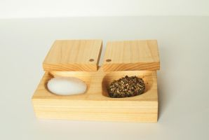 Salt And Pepper cellar by earthly-delight