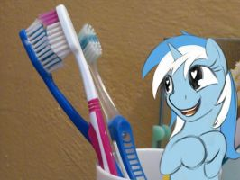 Colgate Brushes by Sokolas