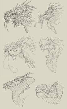 dragon heads - sketches by FabrizioDeRossi