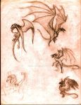 Gentlemen of the Dragon Heirarchy by zenevaydragon973