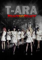 T-ara Day By Day Poster by hadyzero