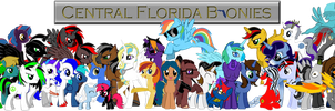 Central Florida Bronies 2014 by mibevan