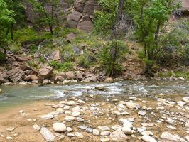 Zion National Park River by Trisaw1