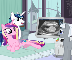 Ultrasound by anarchemitis