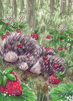 Strawberrys and hedgehogs by xxDarkDustxx