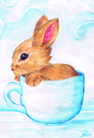 Teacup Bunny by Bluefirewings