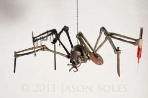 Spider 2011 by MrSoles