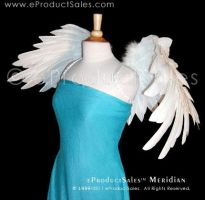 MERIDIAN Angel Surrounding by eProductSales
