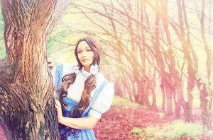 The Wizard of Oz - Dorothy Gale 6 by Raskolnikova-Sonya