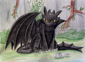 Toothless #008 by Eiki331