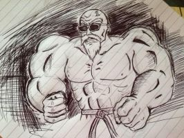 Master Roshi by DetectiveDuckMan