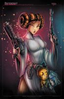 STAR WARS LEIA FIN by RobDuenas