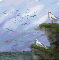 Gulls by Dreaming-in-Shadow