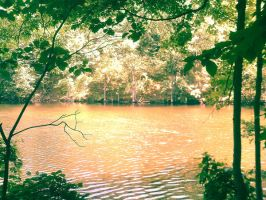 Red forest lake by JRDN762