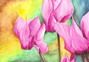 No.2 watercolour Cyclamens by Trinity23