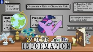 Vital Information with Twilight Sparkle by BB-K