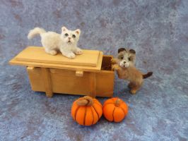 1:12 scale miniature kitty and pup Halloween by squizzy7o7