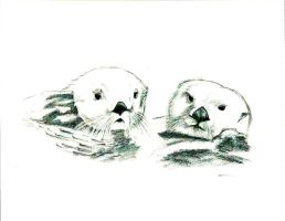 Otters by Attani