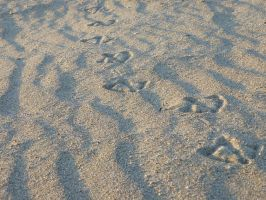 Footprints on a beach by MAKY-OREL