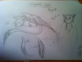 Kidagakash ( Kida ) Narcisses's flying cat by KangooNoh