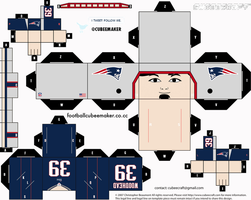 Danny Woodhead Patriots Cubee by etchings13