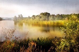 Morning in the tisza by Louisolah