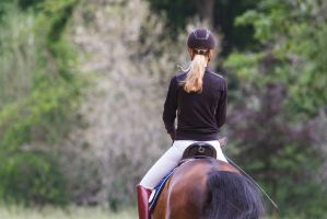Lusitano Dressage Closeup Backview by LuDa-Stock