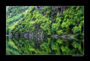 Reflection of wildness by grugster