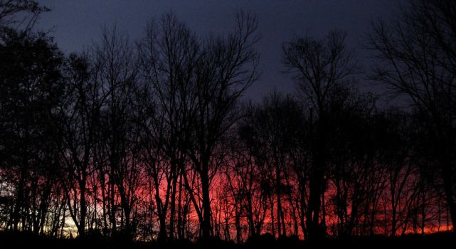 Kentucky Sunrise  11/16 02 by acurmudgeon