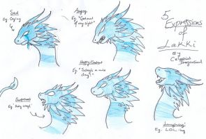 The 5 Expressions of Lakki by Syphellium