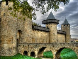 The walled town of Carcassonne by roodpa