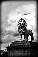 south bank lion by awjay