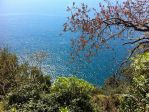 On the route of Cinque Terre by sannee98