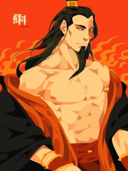 Fire lord Zuko by freestarisis
