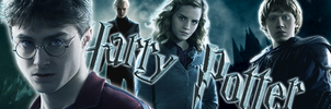 Harry Potter banner by Simolka