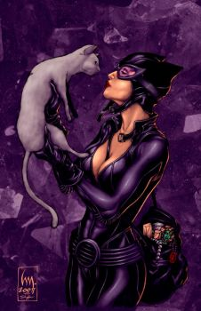 Catwoman:northchavis colors by wrathofkhan